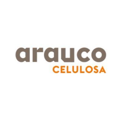 Arauco Celulosa